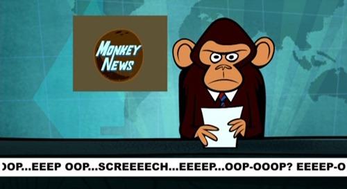 RGS monkey