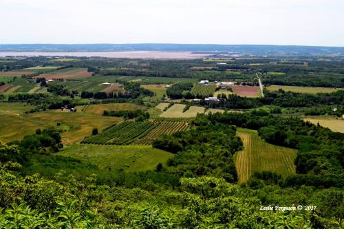 The Annapolis Valley © Leslie Ferguson